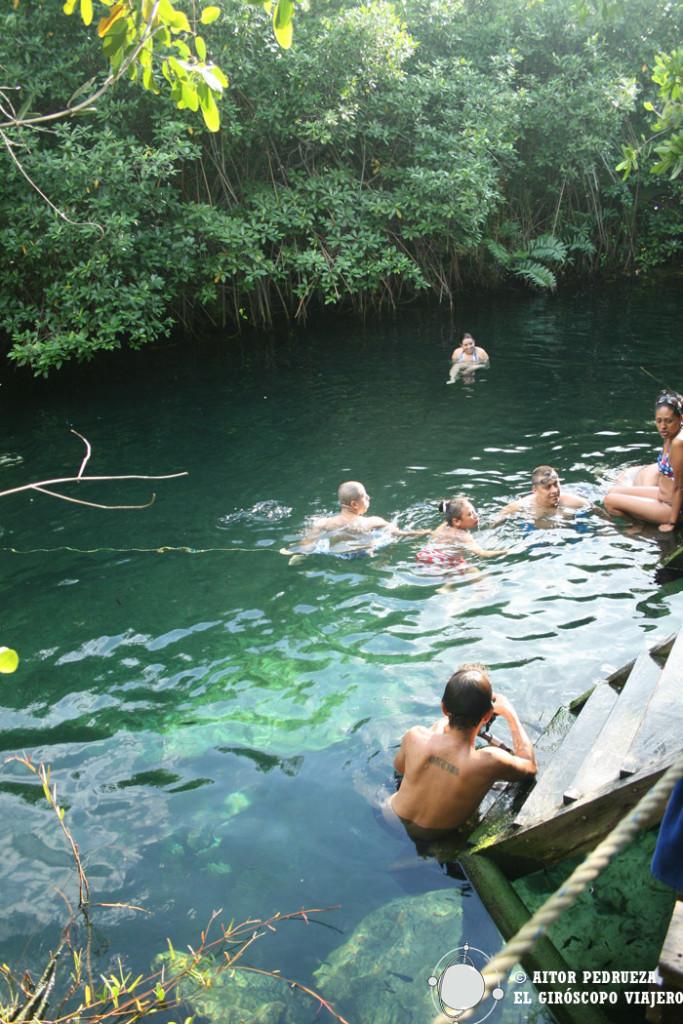 Aguas cristalinas del cenote Xcacelito
