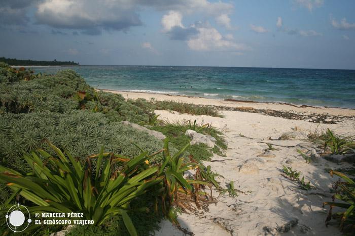 Playa de Xcacel, con sus dunas frente al arrecife