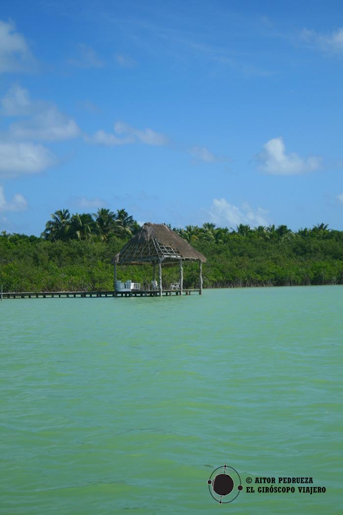 Laguna dela Reserva de Sian Ka'an con los manglares alrededor