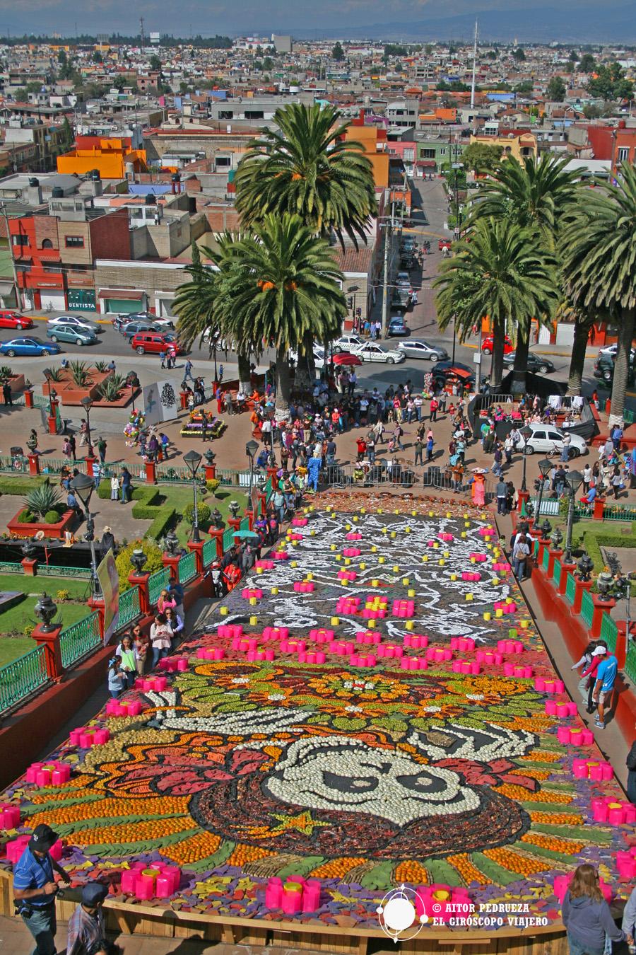 Impresionante tapiz hecho de flores y semillas en el municipio de Metepec para conmemorar el Día de Muertos