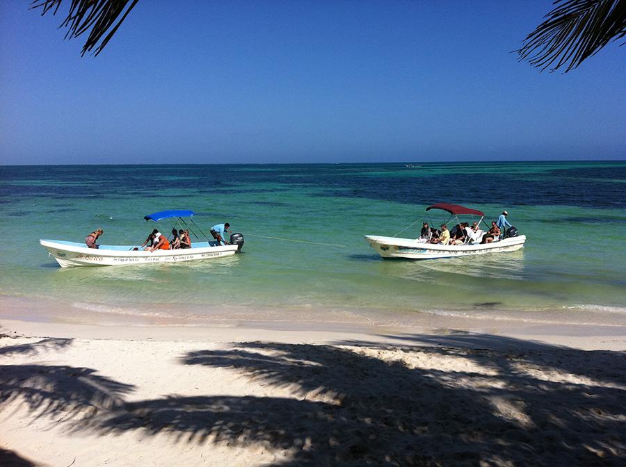 Tour en barco por la costa